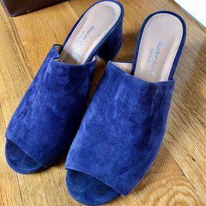 CHARLES DAVID Blue Suede Heels